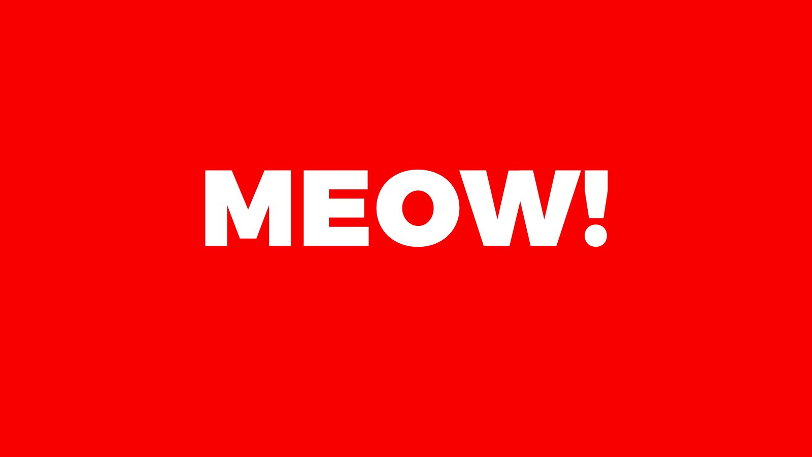 MEOW! A story about a cat and kittens
